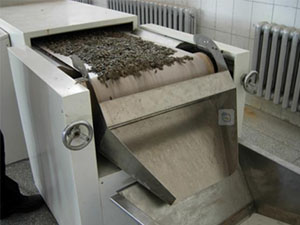 12KW Continuous Sunflower Seeds Roasting Machine