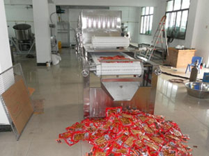 Continuous Packed Food Sterilizing Machine