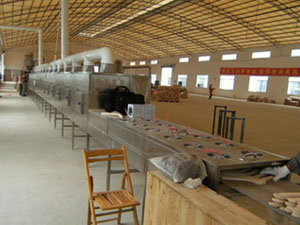 Wood product drying sterilization machine/tunnel belt microwave dryer