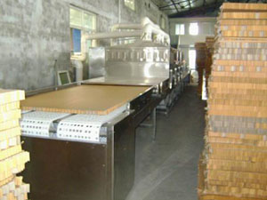 Automatic Continuous Microwave Wood Dryer/Wood Plate Drying Machine