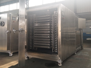 Vacuum freeze dryer for fruits vegetables